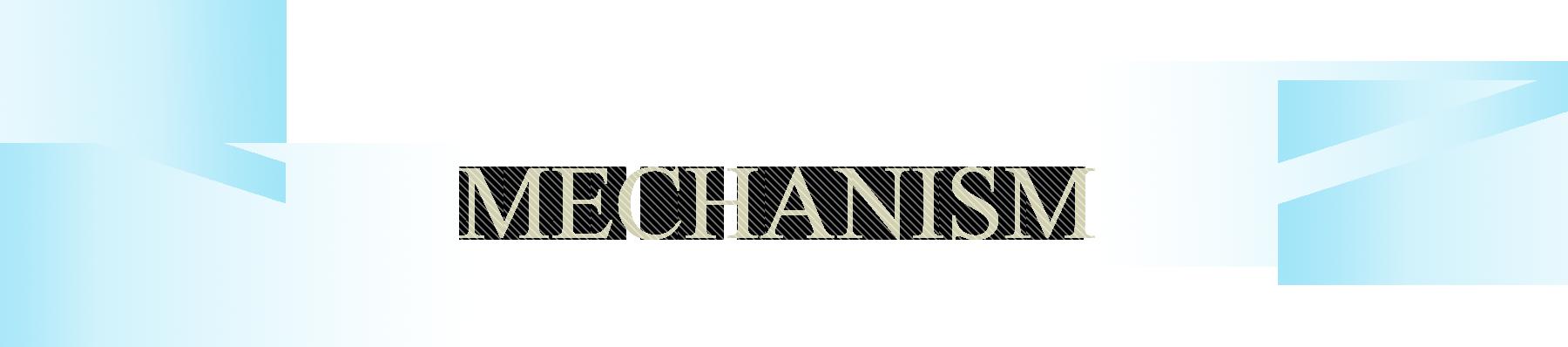 MECHANISMセクションのタイトル
