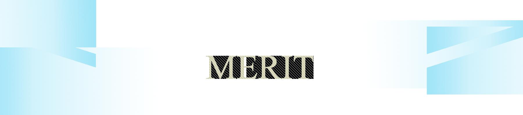MERITセクションのタイトル